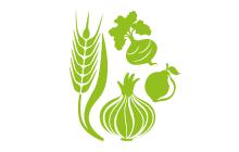 Kamarai Piacfigyelő - Növénytermesztés
